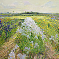 Down the Line Poster by Timothy Easton