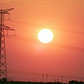 Electrical pylon at silhouetted at sunset Poster by Sami Sarkis