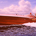 Elusive Print by Richard De Wolfe