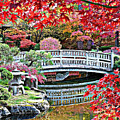 Fall Bridge in Manito Park Print by Carol Groenen