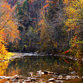 Fall Color Elk River Poster by Thomas R Fletcher