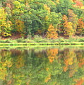 Fall Forest Reflection Print by Joshua Bales