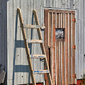 Fisherman's Shed in Prince Edward Island Print by Louise Heusinkveld