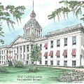 Florida Capitol 1902 Print by Audrey Peaty