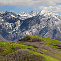 Foothills Above Salt Lake City Print by Utah Images