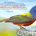For Every Storm a Rainbow Irish Blessing Print by Bonnie Barry