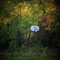 Forgotten Hoop Poster by Michael L Kimble