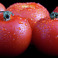 Fresh Tomatoes Poster by Gert Lavsen