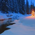 Glowing Christmas Tree By Mountain Poster by Carson Ganci