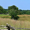 Going to Appomattox Court House Poster by Teresa Mucha