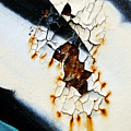 Graffiti Texture II Poster by Ray Laskowitz - Printscapes