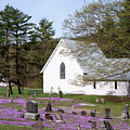 Graveyard Phlox Country Church Print by John Stephens