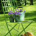 Green garden chair Print by Sandra Cunningham