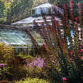 Greenhouse - The Greenhouse Print by Mike Savad