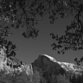 Half Dome Full Glory - Landscape Photos Poster by Laria Saunders