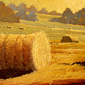 Hay Bales of Bordeaux Poster by Robert Lewis