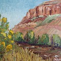 Hogback in early Fall at Watson Lake Print by Margaret Bobb