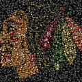 Indian Hockey Puck Mosaic Print by Paul Van Scott