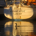 Island Girl Poster by David Lee Thompson