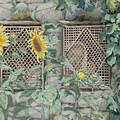 Jesus Looking through a Lattice with Sunflowers Print by Tissot