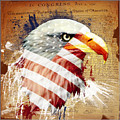 Land Of The Free Poster by Robert  Adelman