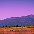 Late Afternoon in Taos Poster by David Patterson