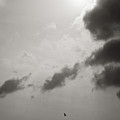 Light of the Sky Print by Konstantin Dikovsky