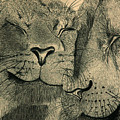 Lions in Love Print by Ramneek Narang