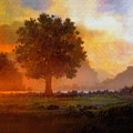 LONE TREE Print by Robert Foster