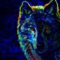 Lone Wolf by WBK