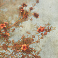 Love Is In Bloom Print by Laurie Search