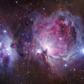 M42, The Orion Nebula Top, And Ngc Poster by Robert Gendler