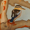 Magnificent blue-winged Kookaburra Poster by Brian Leverton
