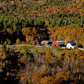 Maine fall colors Print by Gary Cloud