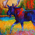 Majestic Monarch - Moose Poster by Marion Rose