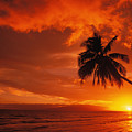 Maui, A Beautiful Sunset Poster by Ron Dahlquist - Printscapes