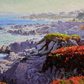 Monteray Bay morning 2 Print by Gary Kim