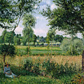 Morning Sunlight Effect at Eragny Print by Camille Pissarro