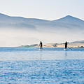 Morro Bay Paddle Boarders Poster by Bill Brennan - Printscapes