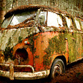 Moss Covered 23 Window Bus Print by Michael David Sorensen