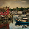 Motif Number One Print by Robin-lee Vieira