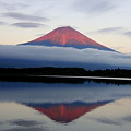 Mount Fuji Poster by Japan from my eyes