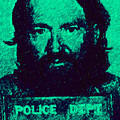 Mugshot Willie Nelson p28 Poster by Wingsdomain Art and Photography