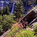 Nevada Falls Yosemite National Park Print by Alan Lenk