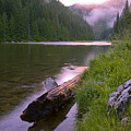 North Fork of the Clearwater Poster by Idaho Scenic Images Linda Lantzy