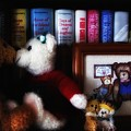 Of Books and Bears Print by Barry Styles