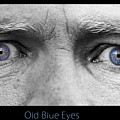 Old Blue Eyes Poster Print Print by James BO  Insogna