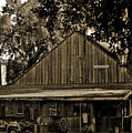 Old Spanish Sugar Mill Sepia Poster by DigiArt Diaries by Vicky B Fuller