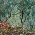 Olive Trees in the Moreno Garden Poster by Claude Monet