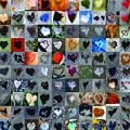 One Hundred and One Hearts Print by Boy Sees Hearts